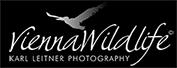 Vienna Wildlife_Logo_White1